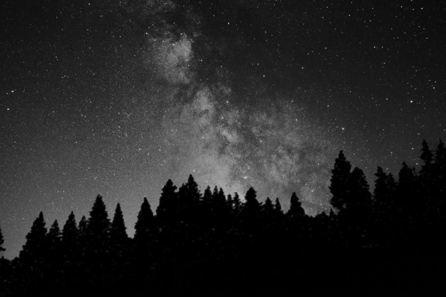 A galaxis magja az erdő felett