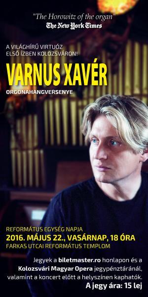 d80fe-varnus_xaver_300x600