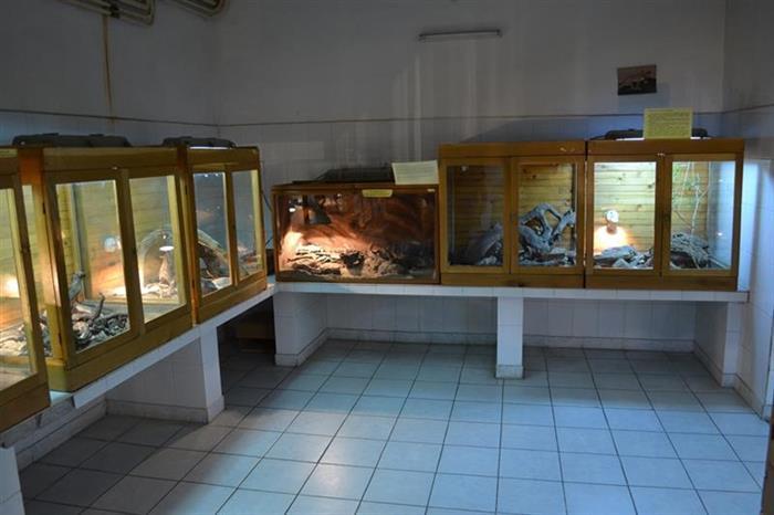 muzeul-vivarium-30